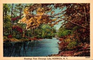 New York Norwich Greetings From Chenango Lake