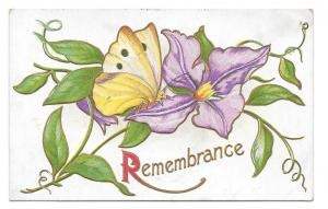 Remembrance Butterfly Purple Clematis flower 1905 Postcard