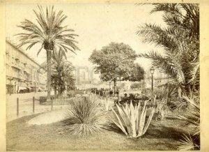 3099498 1860-70 Nice street & garden BIG vintage CABINET PHOTO