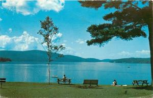 Schroon Lake New York~View of the Lake~1977 Postcard