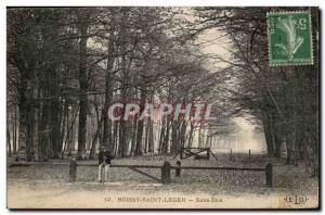 Postcard Old Boissy St Leger Undergrowth