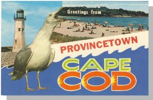 Provincetown, Massachusetts/Mass/MA Postcard, Greetings From Cape Cod,Lighthouse