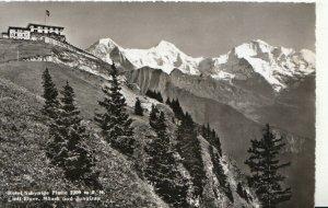 Switzerland Postcard - Hotel Schynige Platte Mit Eiger - Monch Und - Ref TZ7642