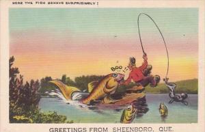 Canada Greetings From Sheenboro Fishing Humour