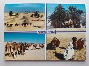 Tunisia, Africa, Sahara of Tunisia, Colour Postcard