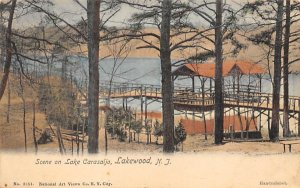 Scene on Lake Carasaljo Lakewood, New Jersey Postcard