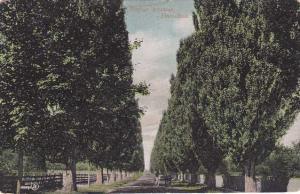 Popular Avenue - Hamilton ON, Ontario, Canada UDB