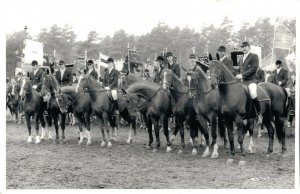 Horse Sports - Hippique Group Horses Real Photo Postcard 03.91