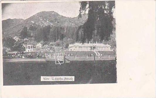 New Zealand View Te Aroha Domain 1906