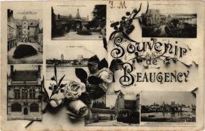 CPA Souvenir de BEAUGENCY (270666)