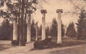 Washington Seattle Hisoric Columns University Of Washington Albertype