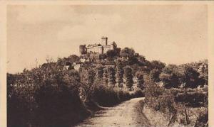 France Chateau de Castelnau Vue d'ensemble