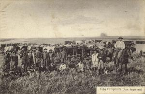argentina, BUENOS AIRES, Vida Campestre, Farmers Cows (1919) Stamp