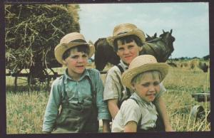 Greetings From Amish Country,Boys Postcard