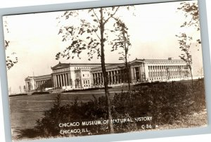 RPPC of Chicago IL, Museum Of Natural History, Illinois c1947 Postcard