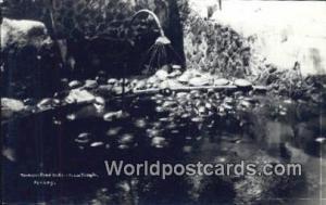 Malaysia, Malaya Penang Tortouise Pond, Aierltam Temple Real Photo