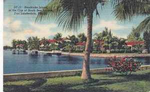 Florida Fort Lauderdale Hendricks Island In The City Of South Sea Island