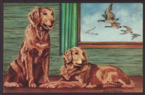 Golden Retriever,Larsen Postcard