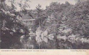 Vermont Bellows Falls Westminster Bridge Over Saxtons River 1907