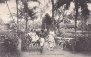 Sri Lanka Ceylon Colombo Bullock Hackery & Ginrickshaw sk1509