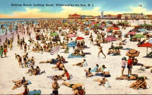 New Jersey Wildwood by the Sea Bathing Beach Looking South 1958