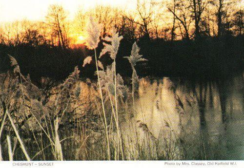 Cheshunt Golden Sunset Herts Hertfordshire Womens Institute Postcard