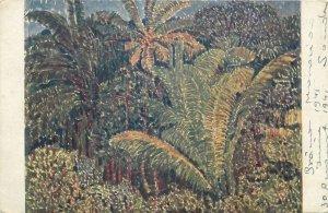Ceylon Art Postcard Otakar Nejedly on the brink of the jungle