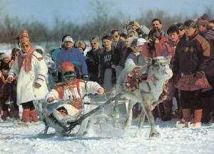 Reindeer Racing in Finland 1980s Sports Postcard