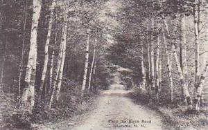 New Hampshire Intervale Thru The Birch Road Albertype