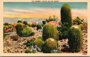 Cactus Barrel Cactus On The Desert