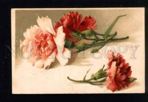 044154 Carnations on Table. By C. KLEIN vintage PC