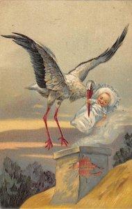 Stork delivering baby Stork 1908