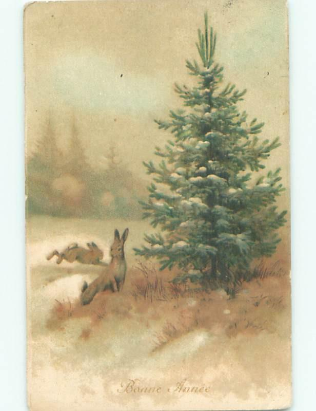 foreign Old Postcard EASTER BUNNY RABBITS BY CHRISTMAS TREE AC2892