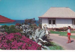 Flowers at Queen's Cottage, Silver Sands, Duncans, Jamaica, Antilles, 40-60´s