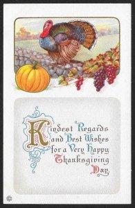 Thanksgiving Kindest Regard & Best Wishes.. Turkey & Whole Pumpkin Unused c1910s