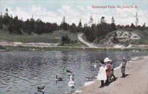 Canada St John Rockwood Park Scene