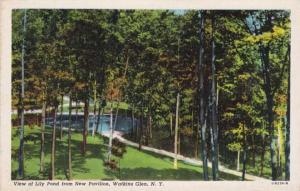 Lily Pond from New Pavilion - Watkins Glen NY, New York - Linen
