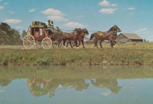 Horse & Cart Upper Village Ontario Canada Canadian Postcard