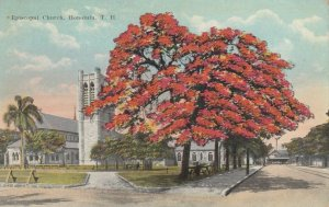 HONOLULU , HAWAII , 00-10s ; Episcopal Church