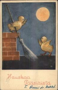 Finland Finnish Easter Chicks on Roof w/ Broom Old Postcard