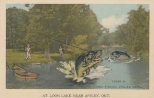 APSLEY , Ontario , Canada , 1930s ; Loon Lake