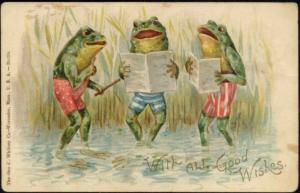 Frog Choir in Swimsuit (1905) Litho