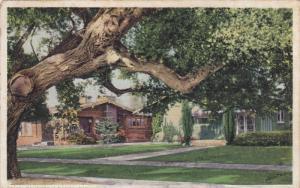 CALIFORNIA Bugalows, PU-1921