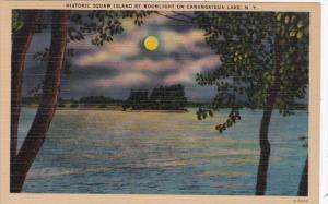 New York Canandaigua Lake Historic Squaw Island By Moonlight