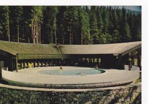 Nakusp Hot Springs, Swimming Pool, Nakusp, British Columbia, Canada, 1960-1970s