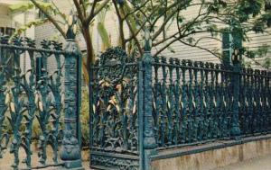 Louisiana New Orleans Cornstalk Fence