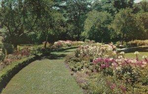 CHICAGO, Illinois, 1950-60s; Perennial Garden, Jackson Park