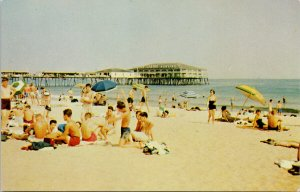 Old Orchard Beach ME Bathers on the Sands Beach Maine Unused Postcard G22