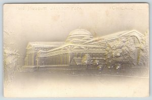 Chicago IL~Fuld Museum~Jackson Park~Grey to Tan Airbrushed~Embossed~1907 IPCC