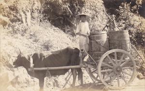 Asian Ox Cart Real Photo